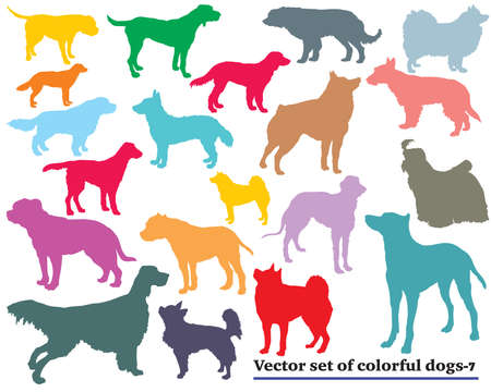 Vector set of colorful isolated different breeds dogs silhouettes on white background. Part 7