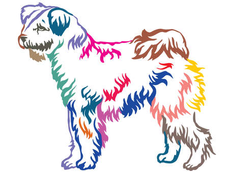 Colorful contour decorative portrait of standing in profile Pumi dog, vector isolated illustration on white background