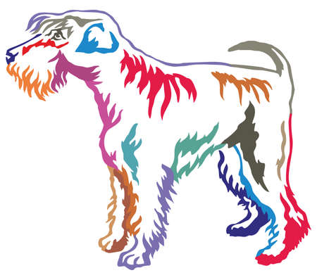 Colorful contour decorative portrait of standing in profile Schnauzer, vector isolated illustration on white background
