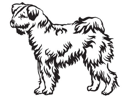 Decorative portrait of standing in profile Pumi dog, vector isolated illustration in black color on white background