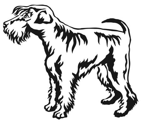 Decorative portrait of standing in profile Schnauzer, vector isolated illustration in black color on white background