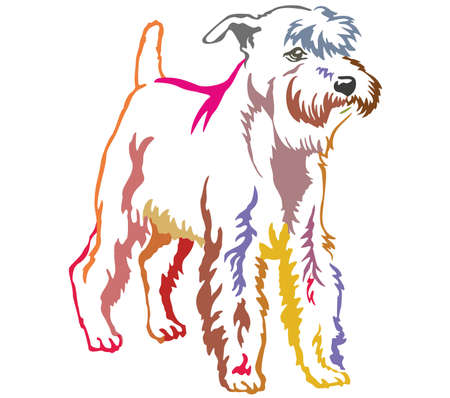 Colorful contour decorative portrait of standing in profile Miniature Schnauzer, vector isolated illustration on white background