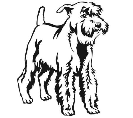 Decorative portrait of standing in profile Miniature Schnauzer, vector isolated illustration in black color on white background