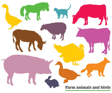 Set of colorful vector farm animals and birds silhouettes in black color isolated on white background Illustration