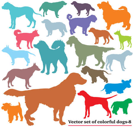Vector set of colorful isolated different breeds dogs silhouettes on white background.