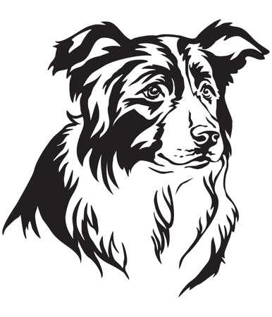 Retrato decorativo de perro Border Collie, vector ilustración aislada en color negro sobre fondo blanco.