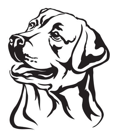Decorative portrait of dog Labrador Retriever, vector isolated illustration in black color on white background Vectores