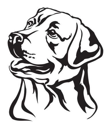 Portrait décoratif de chien Labrador Retriever, vector illustration isolé en couleur noire sur fond blanc Vecteurs