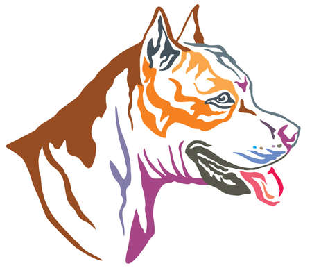 Colorful decorative portrait in profile of dog American Staffordshire Terrier, vector illustration in different colors isolated on white background Illustration