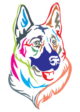 Colorful decorative portrait of dog German shepherd, vector illustration in different colors isolated on white background