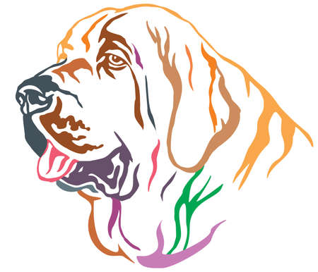 Colorful decorative portrait of dog Spanish Mastiff, vector illustration in different colors isolated on white background