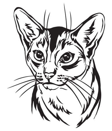 Decorative portrait in profile of Abyssinian Cat, vector isolated illustration in black color on white background