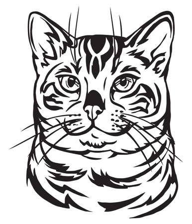 Retrato decorativo en perfil de gato de Bengala, vector ilustración aislada en color negro sobre fondo blanco. Ilustración de vector