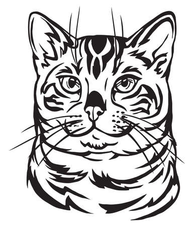 Decorative portrait in profile of Bengal Cat, vector isolated illustration in black color on white background