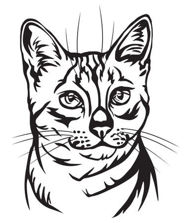 Decorative portrait in profile of Egyptian Mau Cat, vector isolated illustration in black color on white background  イラスト・ベクター素材