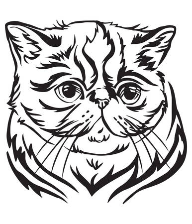 Decorative portrait in profile of Exotic Shorthair Cat, vector isolated illustration in black color on white background