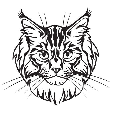 Decorative portrait in profile of Maine Coon Cat, vector isolated illustration in black color on white background