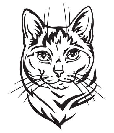 Decorative portrait in profile of Mongrel Cat, vector isolated illustration in black color on white background