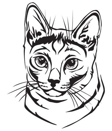 Decorative portrait in profile of Russian Blue cat, vector isolated illustration in black color on white background Иллюстрация