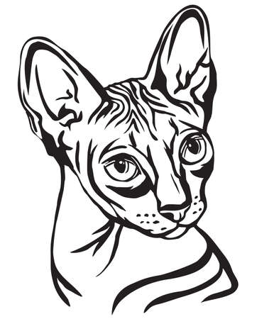 Decorative portrait in profile of Sphynx Cat, vector isolated illustration in black color on white background Çizim
