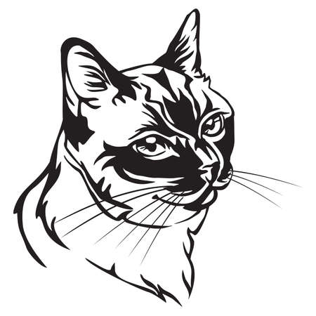 Decorative portrait in profile of Thai Cat, vector isolated illustration in black color on white background