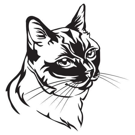 Retrato decorativo en perfil de gato tailandés, vector ilustración aislada en color negro sobre fondo blanco.