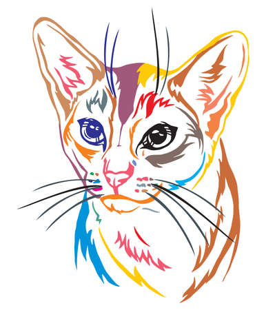 Colorful decorative portrait in profile of Abyssinian Cat, contour vector isolated illustration in black color on white background