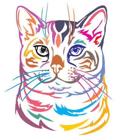 Colorful decorative portrait in profile of Bengal Cat, contour vector isolated illustration in black color on white background