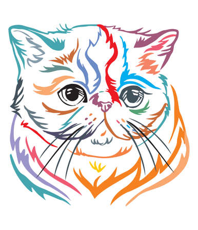 Colorful decorative portrait in profile of Exotic Shorthair Cat, contour vector isolated illustration in black color on white background