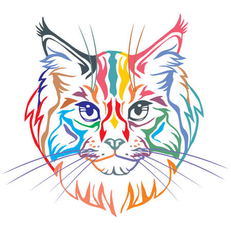 Colorful decorative portrait in profile of Maine Coon Cat, contour vector isolated illustration in black color on white background