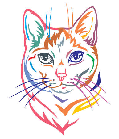 Colorful decorative portrait in profile of Mongrel Cat, contour vector isolated illustration in black color on white background