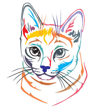 Colorful decorative portrait in profile of Russian Blue Cat, contour vector isolated illustration in black color on white background
