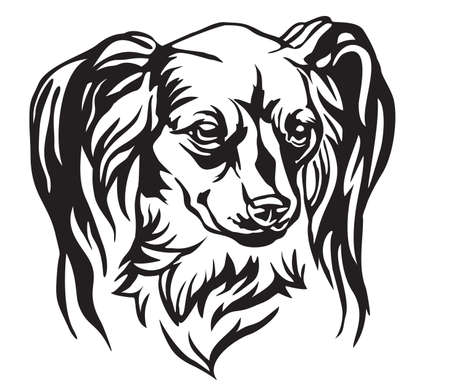 Decorative portrait of Dog Long haired Russian Toy Terrier, vector isolated illustration in black color on white background. Image for design and tattoo.