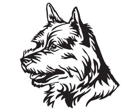 Decorative portrait in profile of Dog Norwich Terrier, vector isolated illustration in black color on white background. Image for design and tattoo.