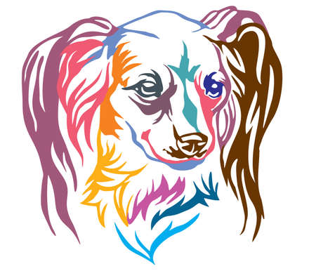 Colorful decorative portrait of Dog Long haired Russian Toy Terrier, vector illustration in different colors isolated on white background. Image for design and tattoo.