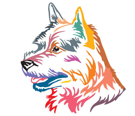 Colorful decorative portrait in profile of Dog Norwich Terrier, vector illustration in different colors isolated on white background. Image for design and tattoo. Illustration