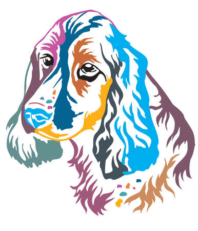 Colorful decorative portrait of Dog Russian Spaniel, vector illustration in different colors isolated on white background. Image for design and tattoo.