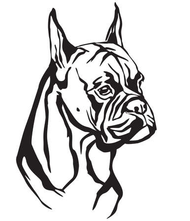 Decorative portrait of Dog Boxer, vector isolated illustration in black color on white background. Image for design and tattoo.