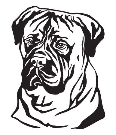 Decorative portrait of Dog Bullmastiff, vector isolated illustration in black color on white background. Image for design and tattoo.