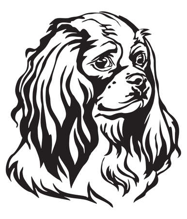 Decorative portrait of Dog Cavalier King Charles Spaniel, vector isolated illustration in black color on white background. Image for design and tattoo. Reklamní fotografie - 103736230