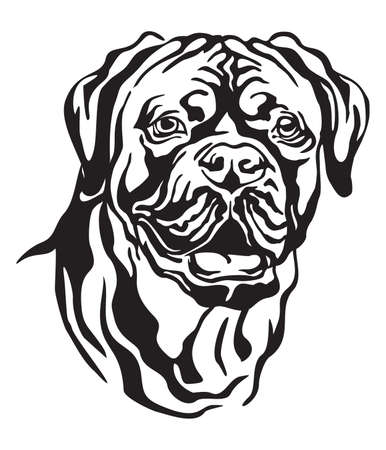 Decorative portrait of Dog Dogue de Bordeaux  (French Mastiff), vector isolated illustration in black color on white background. Image for design and tattoo.