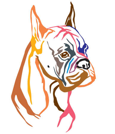 Colorful decorative portrait of Dog Boxer, vector illustration in different colors isolated on white background. Image for design and tattoo.