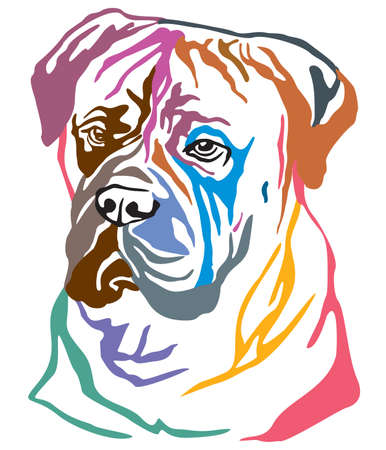Colorful decorative portrait of Dog Bullmastiff, vector illustration in different colors isolated on white background. Image for design and tattoo.