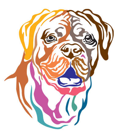 Colorful decorative portrait of Dog Dogue de Bordeaux (French Mastiff), vector illustration in different colors isolated on white background. Image for design and tattoo.
