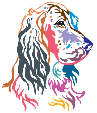 Colorful decorative portrait of Dog English Setter, vector illustration in different colors isolated on white background. Image for design and tattoo. Illustration