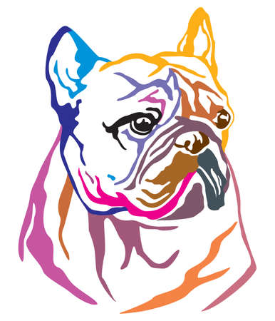 Colorful decorative portrait of Dog French Bulldog, vector illustration in different colors isolated on white background. Image for design and tattoo.