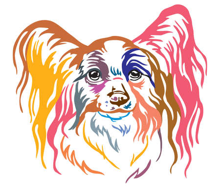 Colorful decorative portrait of Papillon Dog, vector illustration in different colors isolated on white background. Image for design and tattoo.
