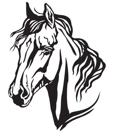 Decorative portrait in profile of Arabian horse, vector isolated illustration in black color on white background. Image for design and tattoo.