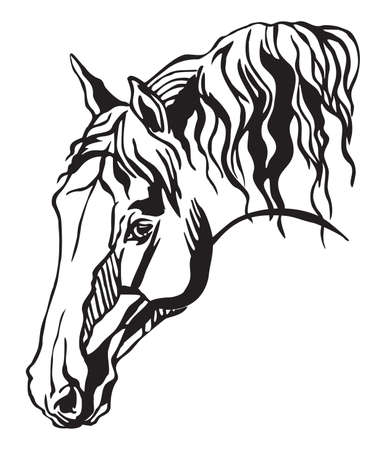 Decorative portrait in profile of horse with long mane, vector isolated illustration in black color on white background. Image for design and tattoo.