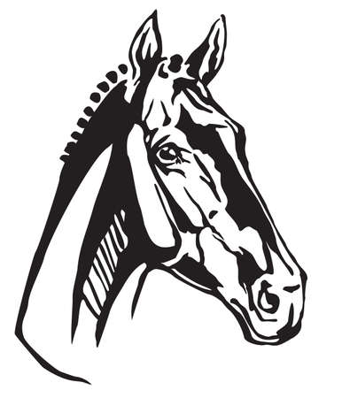 Decorative portrait in profile of Trakehner horse, vector isolated illustration in black color on white background. Image for design and tattoo.